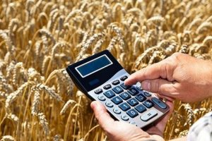 До чого готуватися аграріям в 2018 році – заступник голови аграрного Комітету ВР Олександр Бакуменко